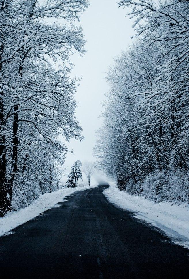 winter-road-1